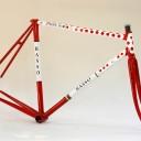 bicicleta,horia nitu, vopsit biciclete, basso 11