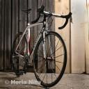 horianitu vopsit biciclete aerografie.12